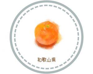 和歌山県の情報